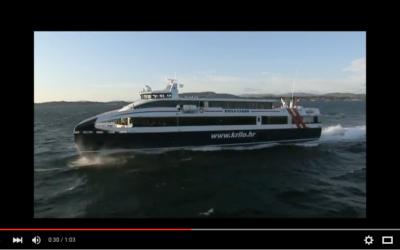 Video: Krilo